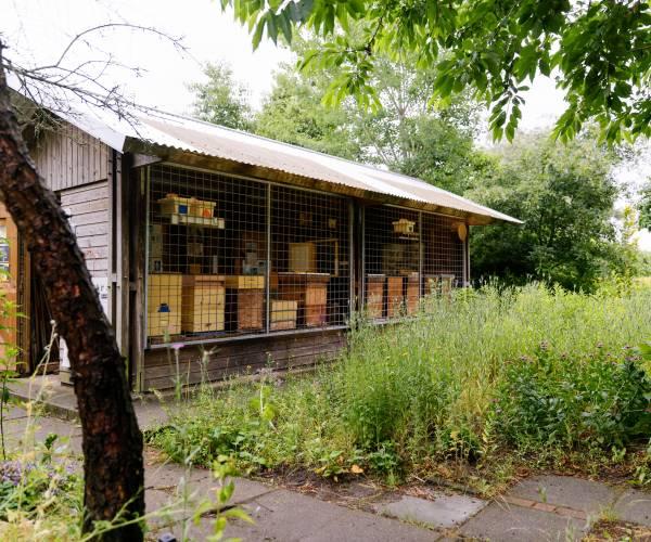 Open Dag op Bijenstal 'De Potmarge' in Leeuwarden