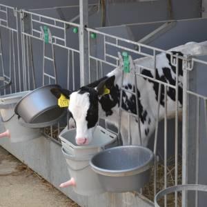 Nije subsydzje foar ynnovative Fryske boeren