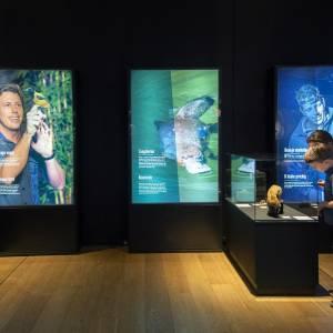 Coole Kidsnacht barst weer los bij Friese musea