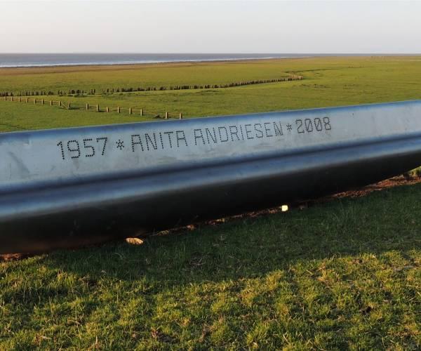 Inschrijven voor Anita Andriesenprijs tot 1 september 2020