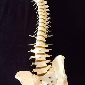 Laat uw leven niet door hoofdpijn beheersen, de fysiotherapeute helpt!