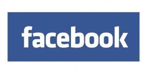 De Stienser Facebook