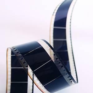 Filmhuis Stiens terug in september