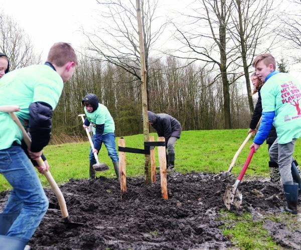 Nieuwe bomen in Stienzer Bosk voor Boomfeestdag
